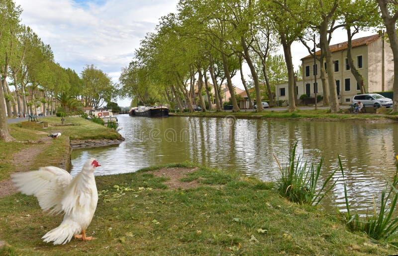 Kanal de Jonction på Salleles D ` Aude arkivbild