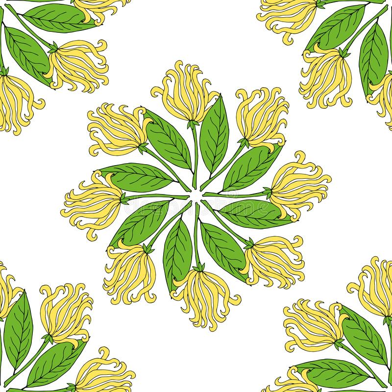 Kananga-olie in kleur, naadloze 4 stock illustratie