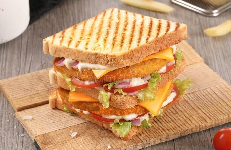 Kanapka z kurczaka smażonego na toście, kanapka z frytkami fotografia royalty free
