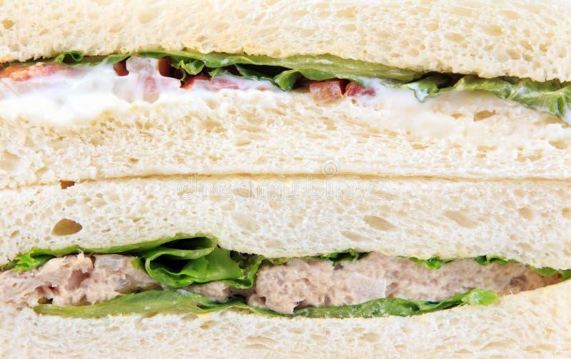 kanapki tuńczyka wholewheat obraz stock