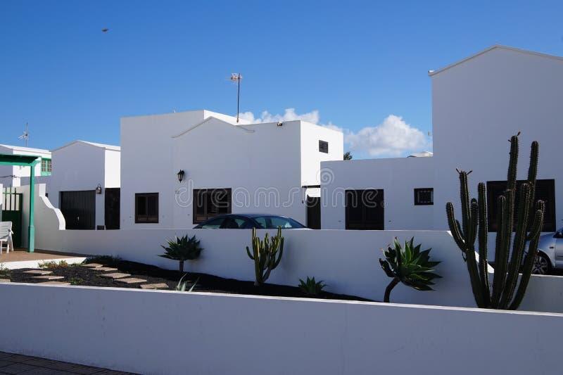 Kanarie - Lanzarote stock foto's