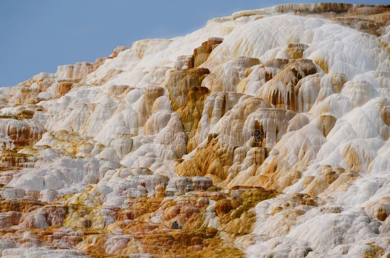 Kanariefågelnedgångar - Mammoth Hot Springs royaltyfri foto