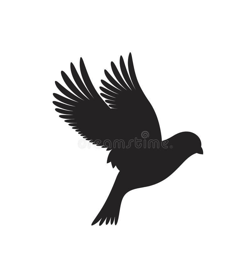 Kanariesilhouet Geïsoleerde kanarie op witte achtergrond vogel royalty-vrije illustratie