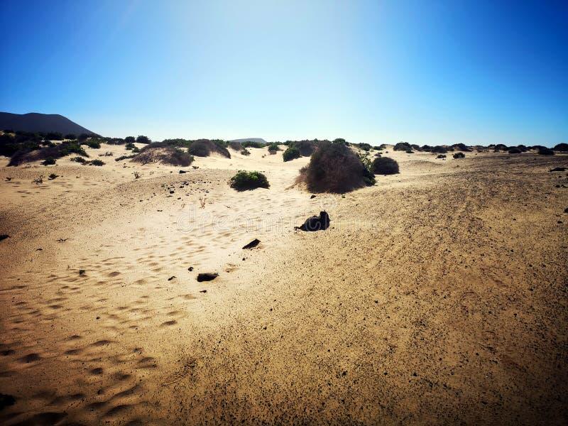 Kanarische Insel, Lanzarote lizenzfreies stockbild