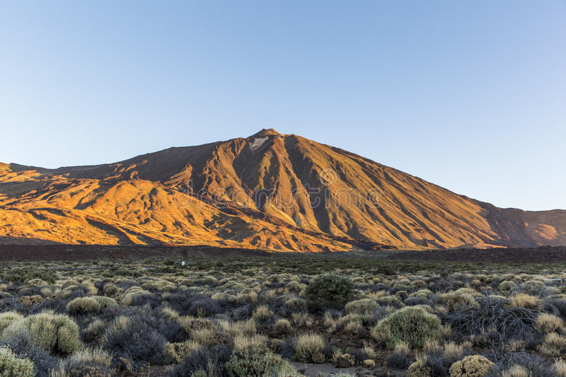 Kanarische Insel, Teneriffa Parque Nacional Del Teide stockfoto