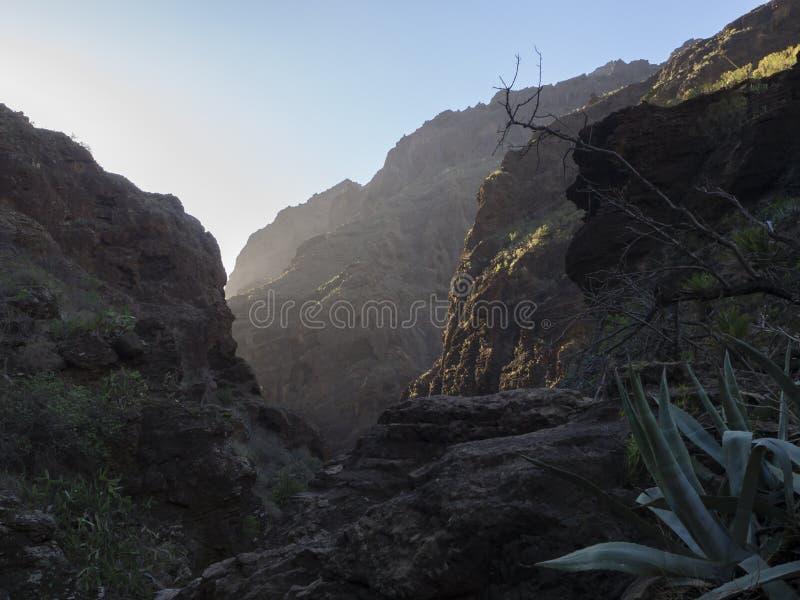 Kanarische Insel, Teneriffa, Schlucht Masca-Talschlucht mit Felsen, a stockbild