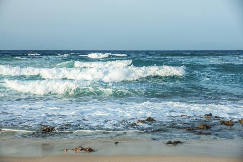 Kanarischer stürmischer Strand lizenzfreie stockfotos