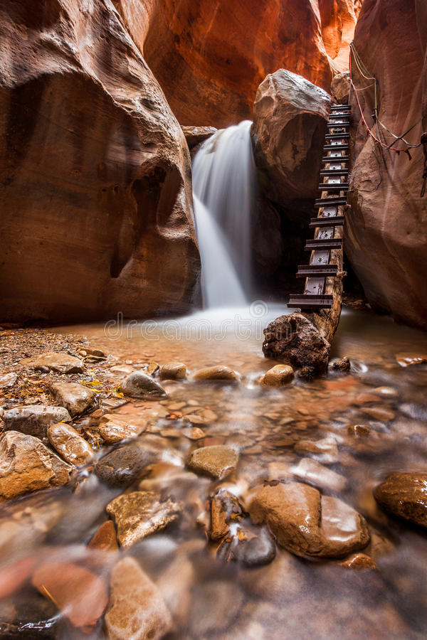 Kanarra小河槽孔峡谷在宰恩国家公园,犹他 免版税图库摄影
