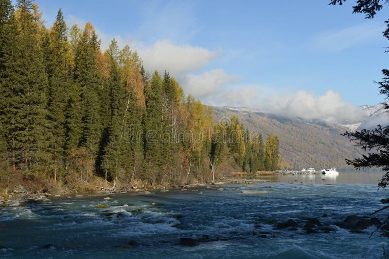 Kanas河在新疆中国 库存照片