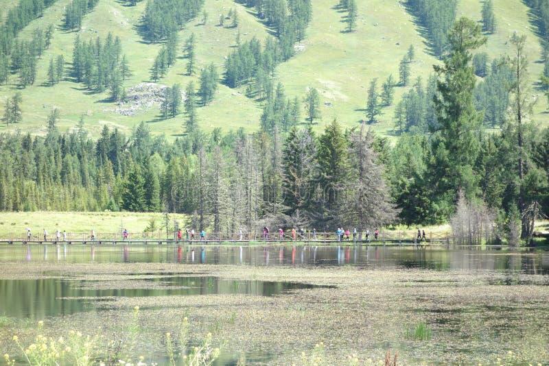 Kanas jezioro, Xinjiang, Chiny obrazy royalty free