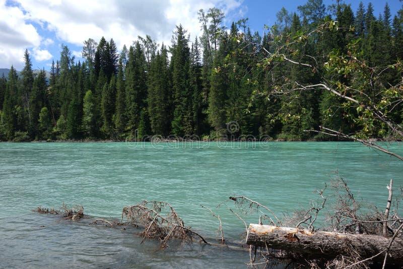 Kanas jezioro, Xinjiang, Chiny fotografia stock