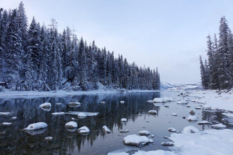 Kanas Lake in winter stock images