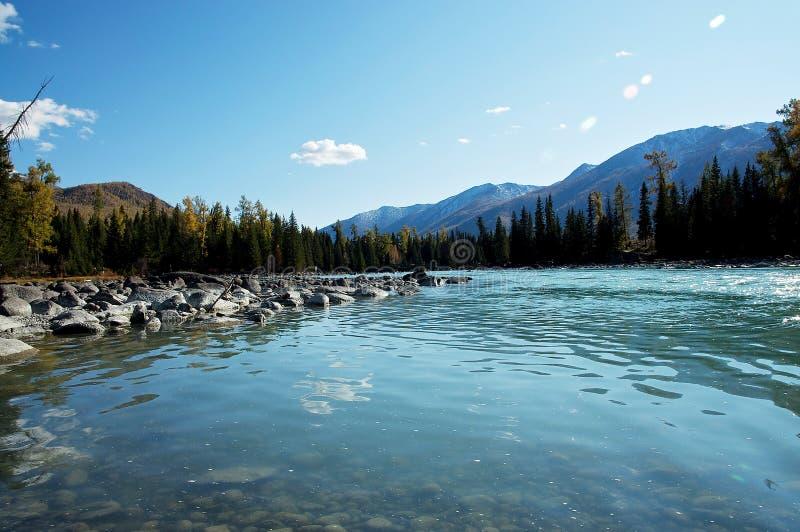 Kanas Lake royalty free stock photography