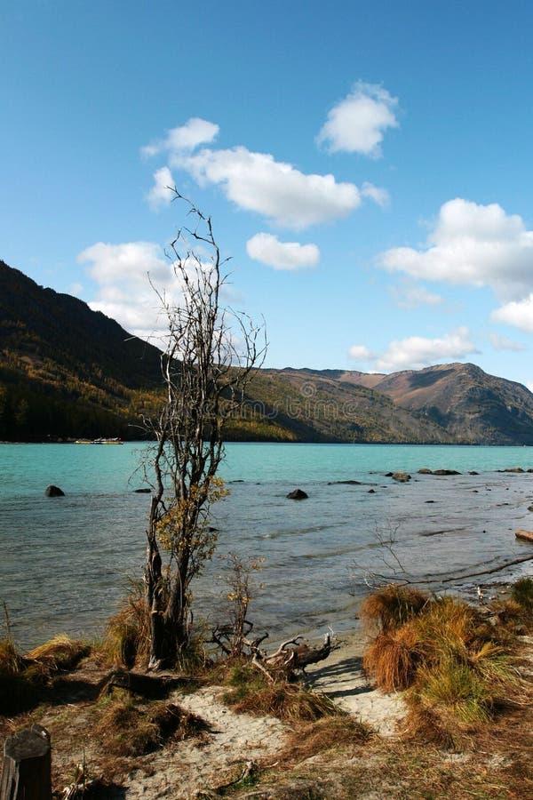 Download Kanas river stock photo. Image of stone, autumn, jade - 6944644