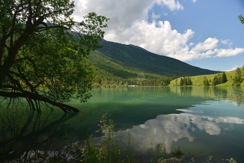 Kanas river scenery stock photo