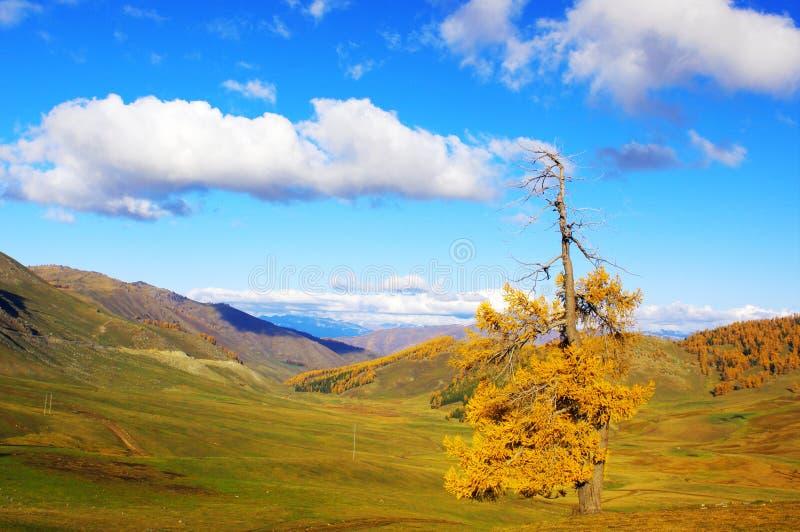 Kanas van de herfst Spectaculaire wolk royalty-vrije stock foto's