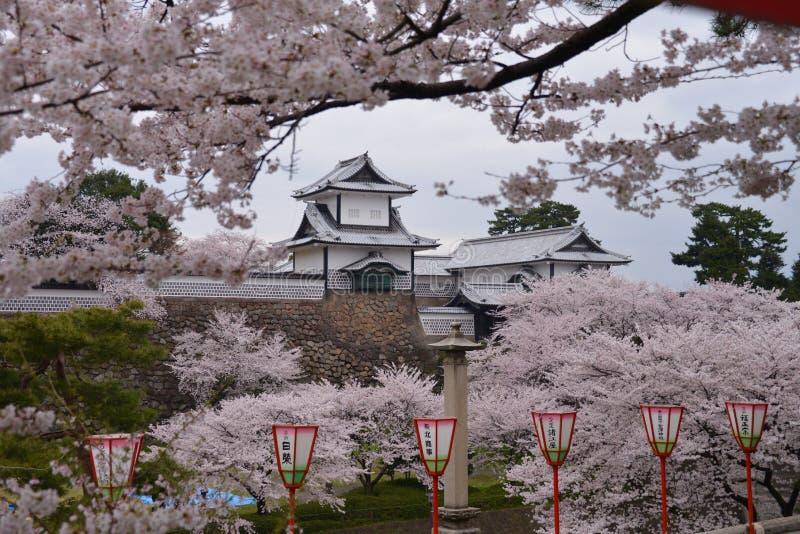 Kanazawa Castle through Cherry Blossoms - Kanazawa, Japan stock photography