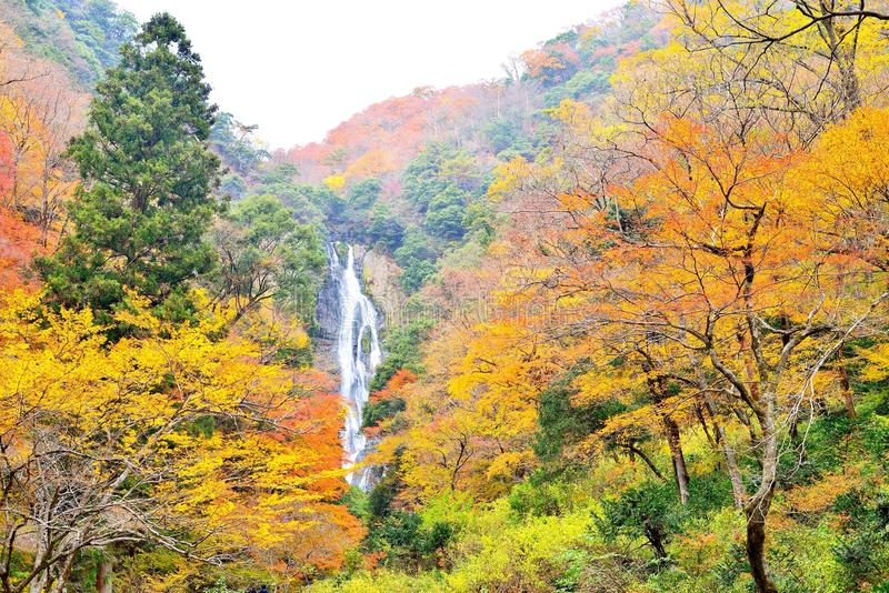 Kanba瀑布和秋天颜色在冈山 免版税库存照片