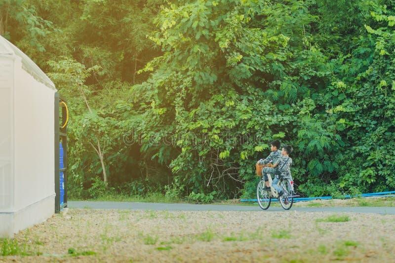 KANCHANABURI THAILAND - OKTOBER 28: Oidentifierade två bröder bär militära kamouflageskjortor rider på cykeln för övning royaltyfri bild
