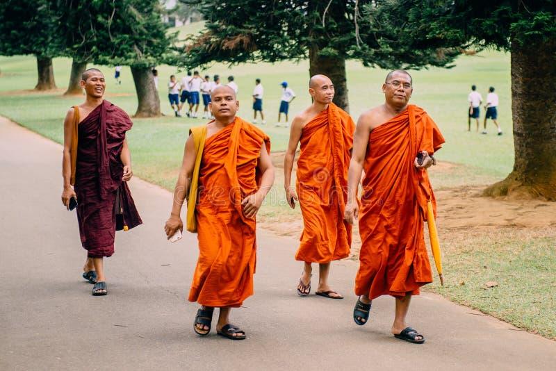 KANDI SRI LANKA - FEBRUARI 2, 2018: Buddistiska munkar i traditionell kl?der som g?r i, parkerar att rymma smartphones i h?nder royaltyfri fotografi