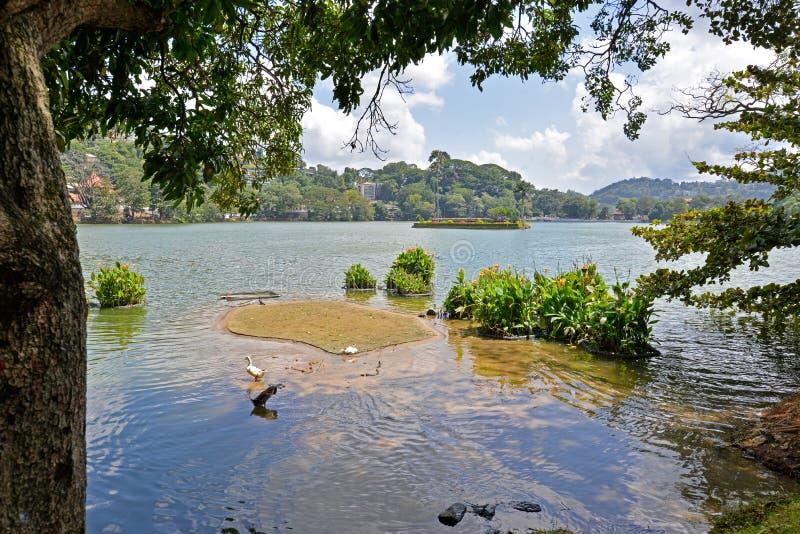 Kandy湖,康提,斯里兰卡 免版税库存图片