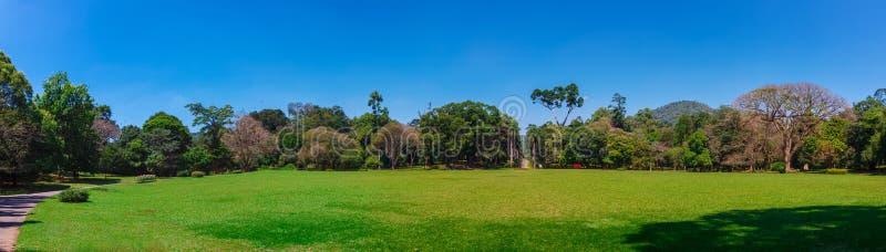 Kandy, Sri Lanka - 5 Februari 2017: Panorama van Koninklijke Botanische Koning Gardens, Peradeniya, Sri Lanka royalty-vrije stock foto's