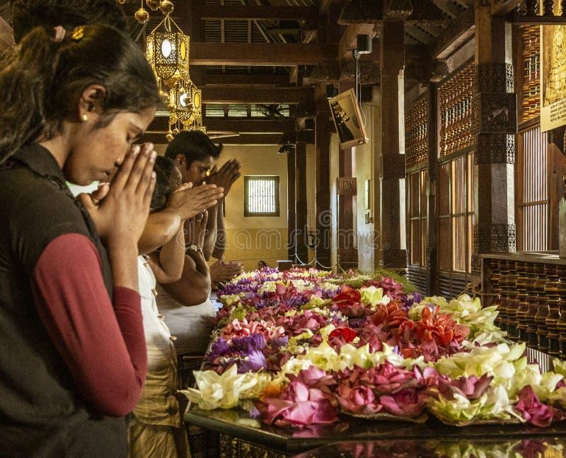 Kandy, Sri Lanka - 09-03-24 Menschen setzen Blumen auf Podium und beten dann zu den hindischen Göttern stockbild