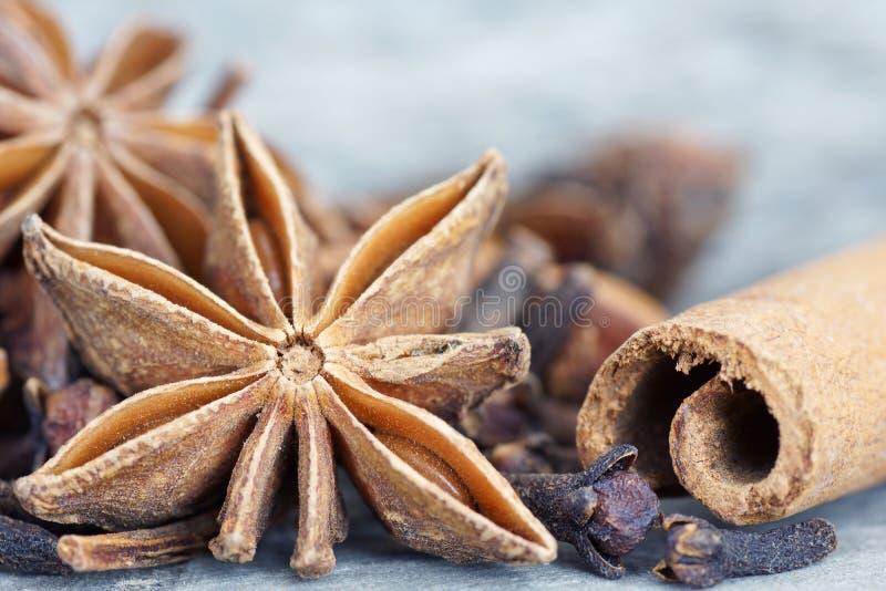 Kaneel, anijsplant en kruidnagels stock foto