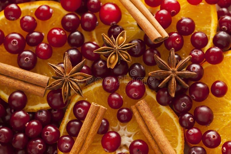 Kaneel, anijsplant, oranje plakken en Amerikaanse veenbessen stock afbeeldingen