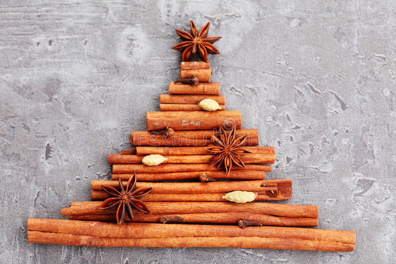 Kaneelboom stock afbeeldingen