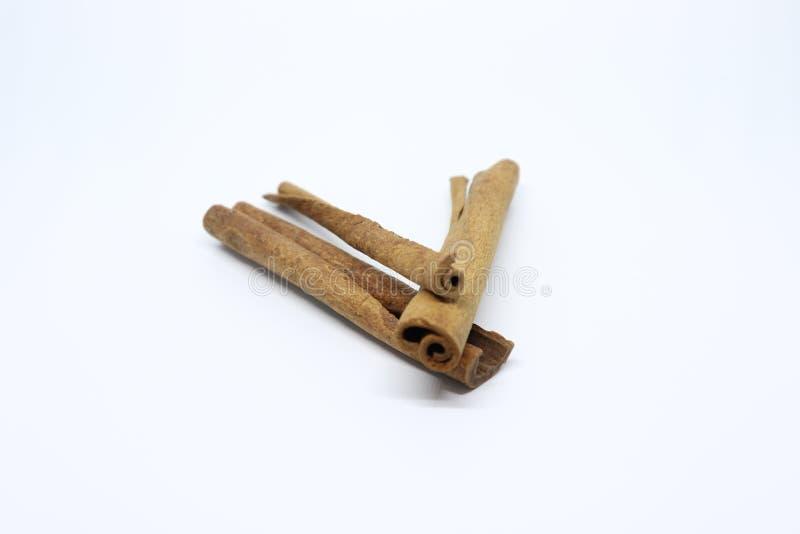 kanel isolerad stick kanelbrun pinne på vit bakgrund arkivbild