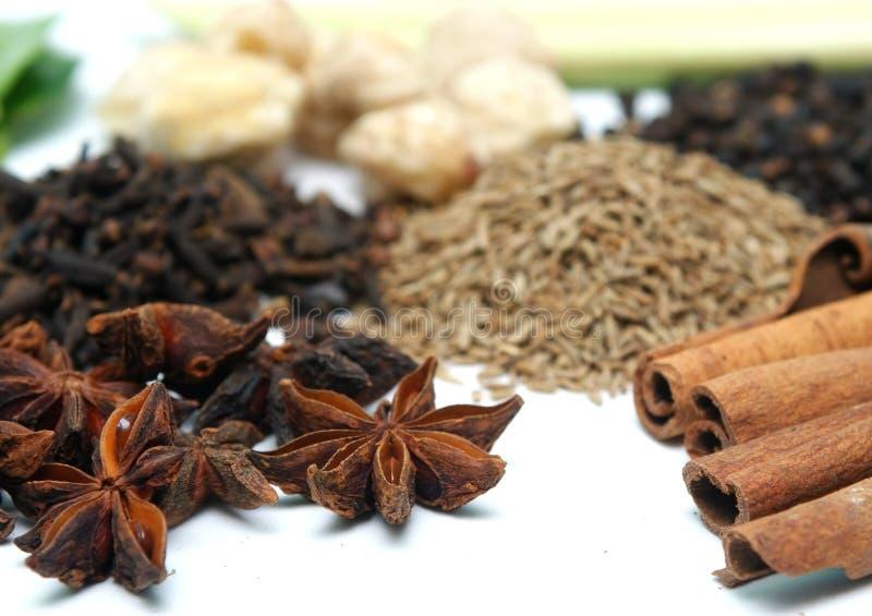 kanelbrun kryddnejlika royaltyfri foto