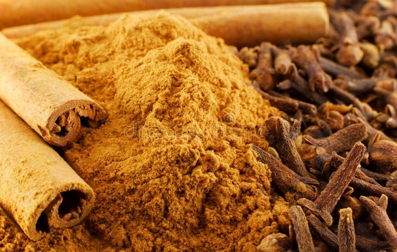 kanelbrun kryddnejlika royaltyfri bild