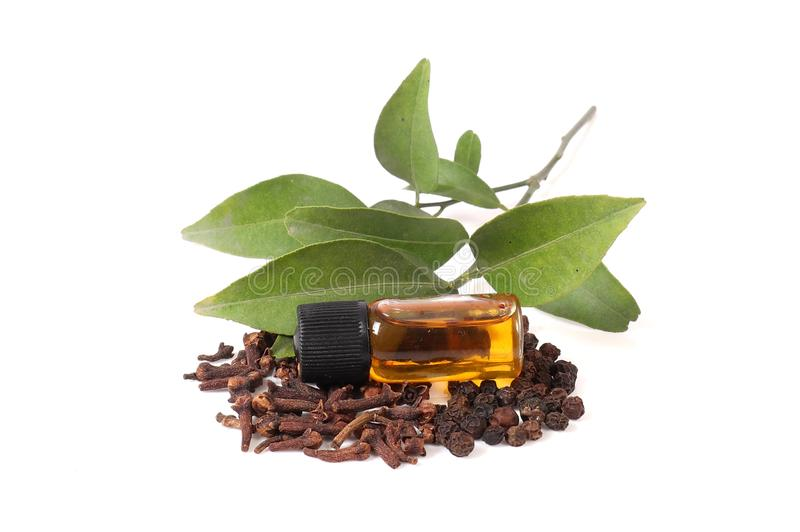 Kanelbrun olja för kryddnejlika royaltyfria foton