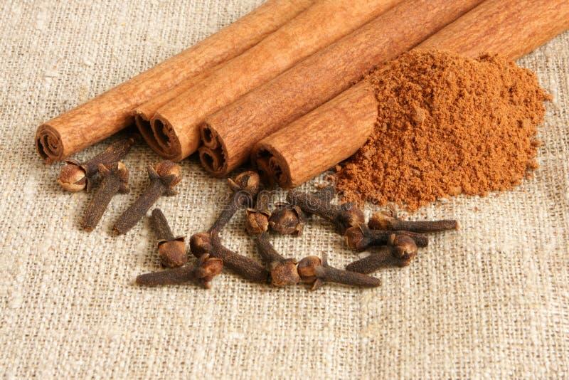 kanelbruna kryddnejlikor arkivbild