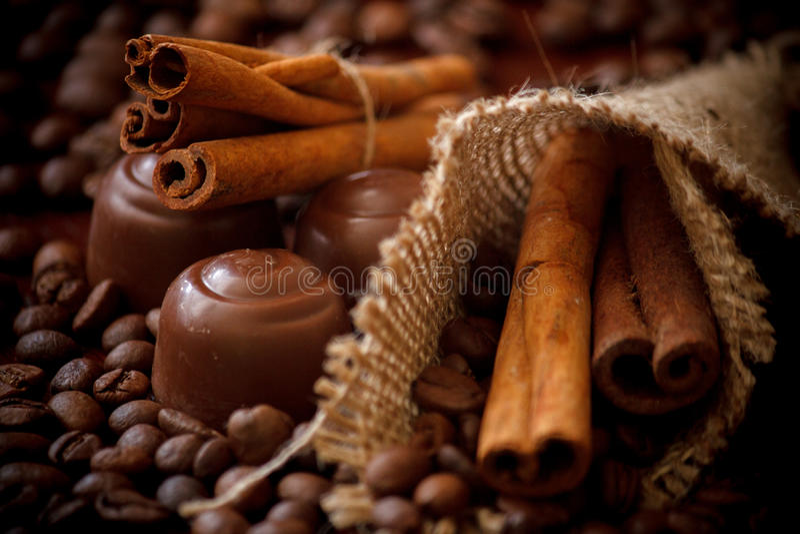 Kanelbruna pinnar & choklad royaltyfri fotografi