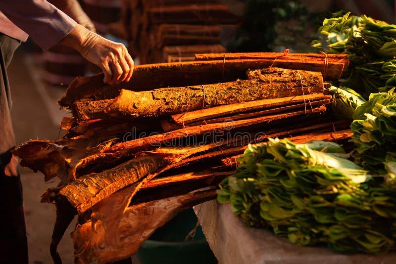 Kanelbrunt trä och Betle på den lokala marknaden i morgonen Pakse Champasak, Laos Varmt tona härlig lampa Grund avdelning av royaltyfri foto