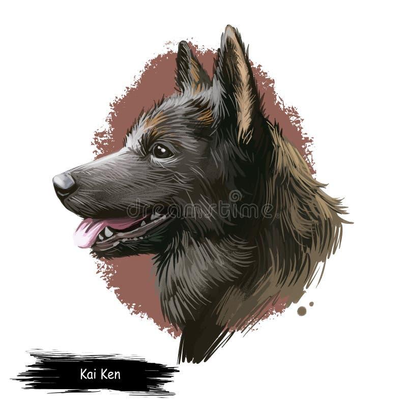 Kangal Dog、Kangal Shepherd Dog、Sivas Kangal、土耳其Kangal、Anatolian Shepherd犬数字艺术图解在白色上分离 免版税图库摄影