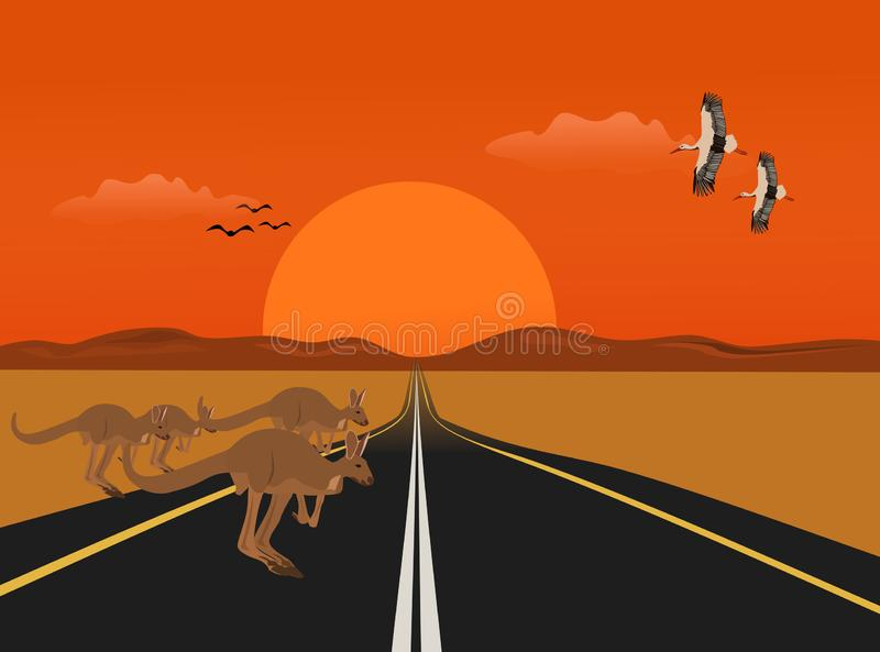 The kangaroo is running on a long road in the desert, with sunsets background royalty free illustration