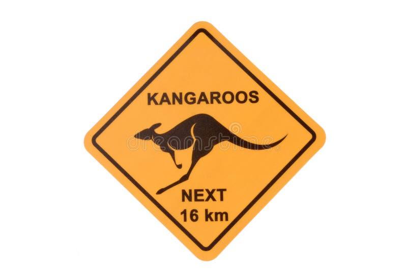 Australia, Australian Kangaroo road warning sign isolated on white background. Australian road sign warning of kangaroos isolated on a white background royalty free stock photo