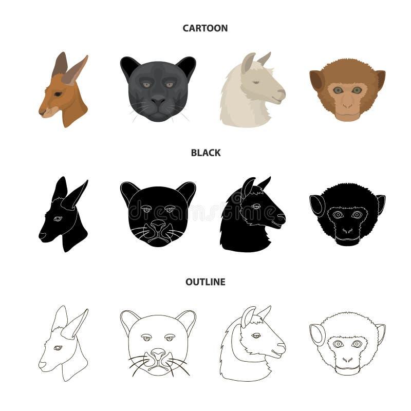 Kangury, lama, małpa, pantera, Realistyczni zwierzęta ustawiać inkasowe ikony w kreskówce, czerń, konturu stylowy wektorowy symbo ilustracji