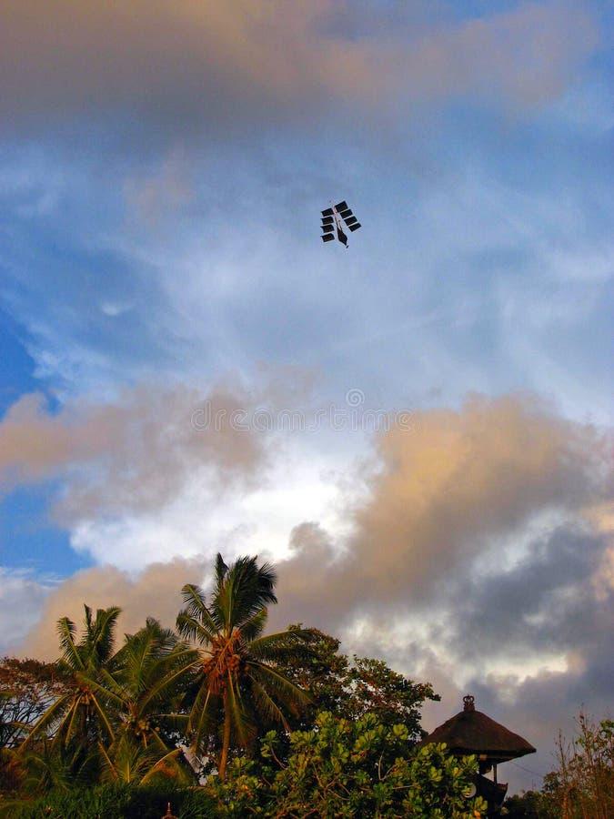 Kani latanie w Bali obrazy royalty free