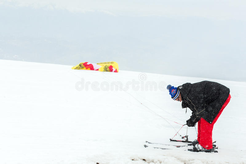 Kania śnieg fotografia stock