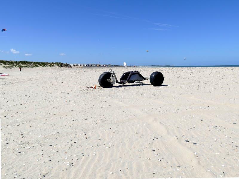 Kania powozik na plaży obraz royalty free