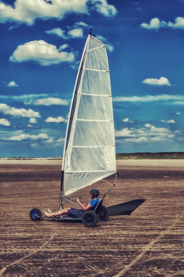 Kania setkarz na plaży fotografia royalty free