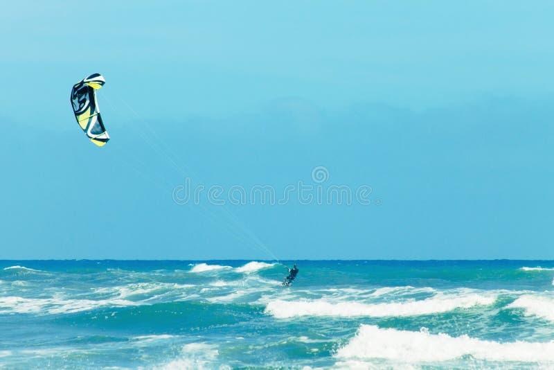 Kania surfingowa jazdy fala fotografia royalty free