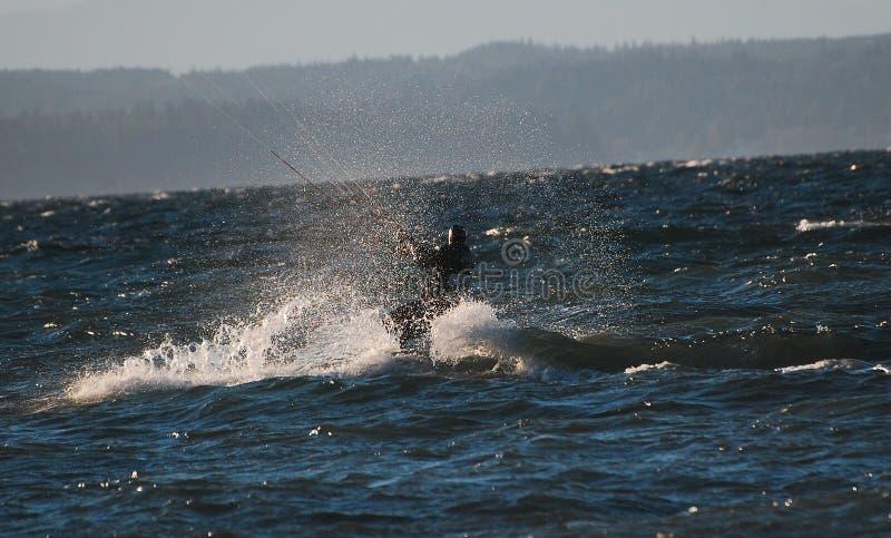 Kania surfingowa odmieniania kurs zdjęcia royalty free