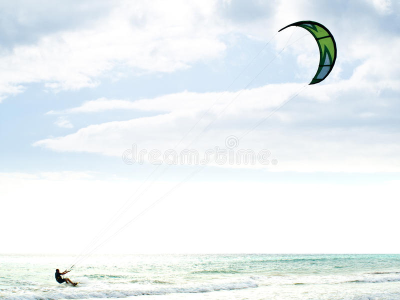 kania surfingowiec obraz royalty free