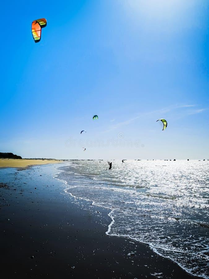 Kania surfingowiec na ocean plaży Sylwetka kania surfingowiec przez dennego brzeg Plenerowy Aktywny styl życia fotografia stock