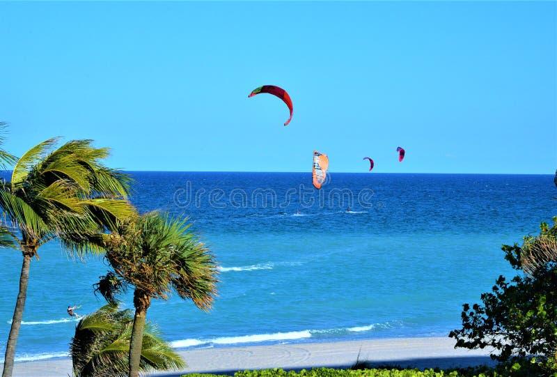 Kania surfingowowie cieszą się światowych klasowych warunki z Boca Raton, Floryda plaża zdjęcie stock
